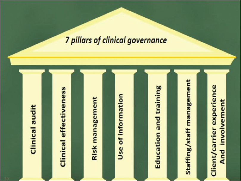 Figure 1: Seven pillars of clinical governance based on the NHS approach